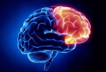Epilepsia – Mitos e Verdades